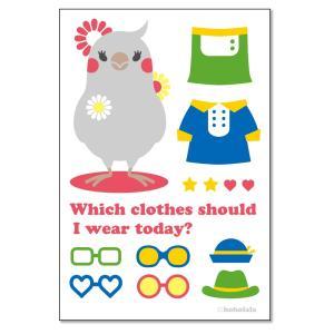 ほほらら工房  ポストカード オカメインコ女子 244A0235  BIRDMORE バードモア 鳥グッズ 鳥用品 雑貨 鳥 バード プレゼント|birdmore