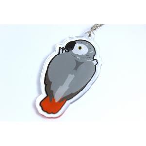いんこっこのくに / ヨウム アクリル キーホルダー / 206A0287 ネコポス 対応可能 ( BIRDMORE バードモア 鳥用品 鳥グッズ 雑貨 グッズ 鳥 とり トリ )|birdmore