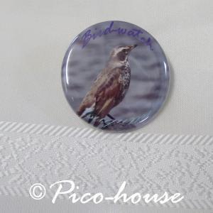 ぴこはうす / 缶バッジ ツグミ / 056A0210  ネコポス 対応可能 ( BIRDMORE バードモア 鳥グッズ 鳥用品 雑貨 鳥 バード プレゼント )|birdmore