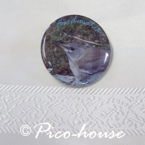 ぴこはうす / 缶バッジ シロハラ / 056A0212  ネコポス 対応可能 ( BIRDMORE バードモア 鳥グッズ 鳥用品 雑貨 鳥 バード プレゼント )|birdmore