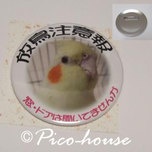 ぴこはうす / 缶バッジ オカメA / 056A0213  ネコポス 対応可能 ( BIRDMORE バードモア 鳥グッズ 鳥用品 雑貨 鳥 バード プレゼント )|birdmore