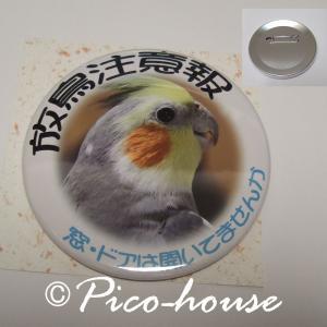 ぴこはうす / 缶バッジ オカメB / 056A0214  ネコポス 対応可能 ( BIRDMORE バードモア 鳥グッズ 鳥用品 雑貨 鳥 バード プレゼント )|birdmore