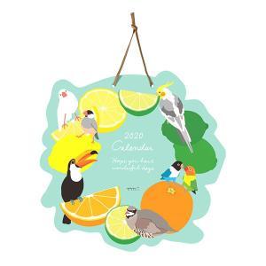 ネコポス対応可能(2冊迄) MIDORI / 2020年 壁掛カレンダー ダイカット トリ柄 30187-006  / 9995529( BIRDMORE バードモア 鳥用品 鳥グッズ 鳥 とり トリ )|birdmore
