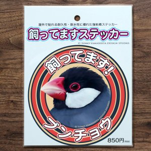TOMO YAMASHITA DESIGN STUDIO.  飼ってますステッカー 桜文鳥 195A0362  ネコポス 対応可能 インコサミット バードモア 鳥用品 鳥グッズ 雑貨|birdmore
