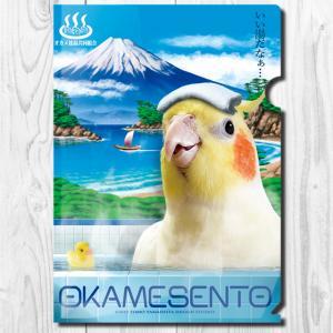 TOMO YAMASHITA DESIGN STUDIO.  A4クリア ファイル オカメ銭湯 195A0366  ネコポス 対応可能 インコサミット バードモア 鳥用品 鳥グッズ 雑貨|birdmore