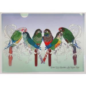 青いことり工房 図鑑風 クリアファイル ウロコインコ ネコポス 対応可能 233A0250   BIRDMORE バードモア 鳥用品 鳥グッズ 雑貨 鳥 とり プレゼント|birdmore