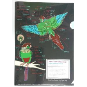 青いことり工房  図鑑風 クリアファイル ホオミドリ ウロコインコ 233A0251 ネコポス 対応可能 BIRDMORE バードモア 鳥用品 鳥グッズ 雑貨 鳥|birdmore