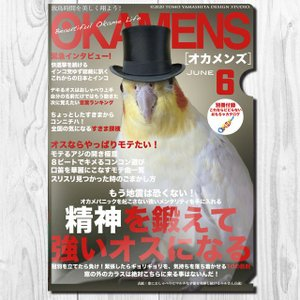 TOMOYAMASHITA DESIGN STUDIO.  A4 クリアファイル オカメンズ6月号 195A0372  ネコポス 対応可能  インコサミット バードモア 鳥グッズ 鳥用品|birdmore