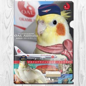 TOMOYAMASHITA DESIGN STUDIO.  A4 クリアファイル オカメエアライン 195A0373  ネコポス 対応可能  インコサミット バードモア 鳥グッズ 鳥用品|birdmore