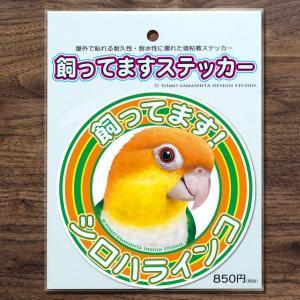 TOMOYAMASHITA DESIGN STUDIO.  シロハラインコ 飼ってます ステッカー 195A0375  ネコポス 対応可能  インコサミット バードモア 鳥グッズ 鳥用品|birdmore