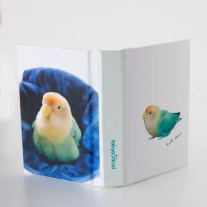 tokyoShiori  付箋 カバー 水色 コザクラインコ  245A0249 ネコポス 対応可能 BIRDMORE バードモア 鳥用品 鳥グッズ 雑貨 グッズ 鳥 とり トリ インコ|birdmore