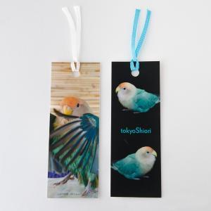 tokyoShiori  2枚組 栞 04 コザクラ インコ  245A0251 ネコポス 対応可能  BIRDMORE バードモア 鳥用品 鳥グッズ 雑貨 しおり グッズ 鳥 とり トリ インコ|birdmore