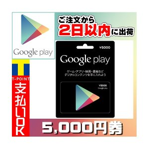 Google Play ギフトカード(プリペイドカード) グーグルプレイ 5000円分 birds-eye