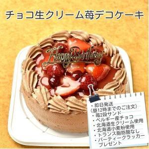 ケーキ スイーツ バースデーケーキ お誕生日ケーキ チョコ生苺ケーキ4号