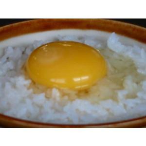 庭鶏の卵8ケース(48個入)【送料無料】鶏卵 birthplace