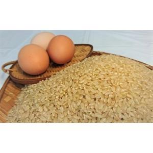 【あきたこまち】A5kg「玄米」と卵2ケース(12個入)セット【令和元年産】【秋田県産】「鶏卵」|birthplace