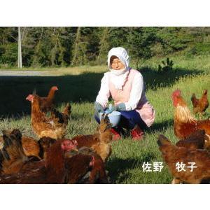 庭鶏の卵4ケース24個|birthplace|02