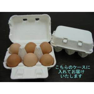 庭鶏の卵4ケース24個|birthplace|03