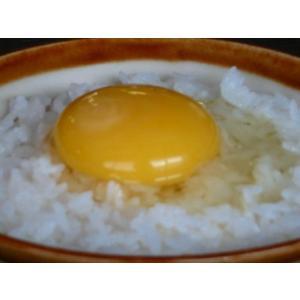 庭鶏の卵4ケース24個|birthplace|06