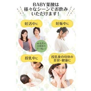葉酸サプリ 妊娠中 妊活 ママのめぐみ BABY葉酸|bisai-beauty|14