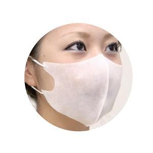 使い捨て メガ立体マスク 耳掛タイプ100枚入