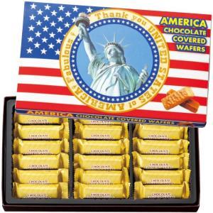 アメリカ チョコウエハース (袋付) アメリカ定番 アメリカロングセラー bisho