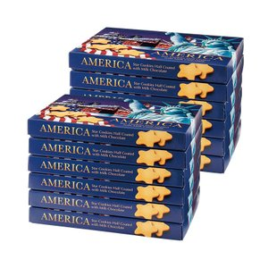 アメリカ スター チョコクッキー 12箱セット アメリカ新商品 アメリカクッキー bisho