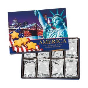アメリカ スター チョコクッキー アメリカ新商品 アメリカ土産 おすすめクッキー bisho