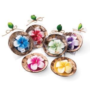 ハワイ プルメリア キャンドル 6個セット ハワイ雑貨 リゾートみやげ|bisho