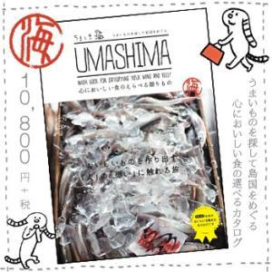 グルメ カタログギフト「umashima(うましま)」海コース|bishokuc
