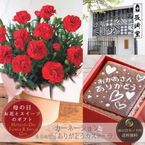 母の日プレゼント(ギフト)2018・ カーネーション鉢植え(5号鉢)と「長崎堂」ありがとうカステーラのセット[母の日カード付・送料無料] bishokuc