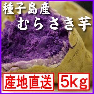 種子島むらさき芋(紫芋)5kg|bishokuc