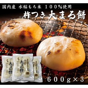 お歳暮 ギフトにも 杵つき 大まる餅 600g×3(お餅・丸餅・お正月のお雑煮におすすめ)【送料無料】|bishokuc