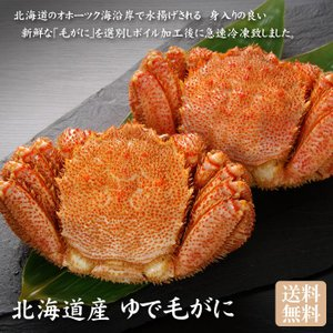ゆで毛がに姿 2尾セット(カニ・蟹)「送料無料]|bishokuc