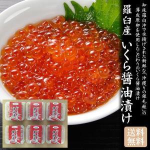 北海道 知床 羅臼産 いくら醤油漬け 70g×6「送料無料]|bishokuc