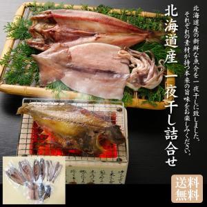 北海道産 一夜干し詰合せ「送料無料] bishokuc