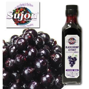 SUJON(スジョン) カシス濃縮果汁|bishokuc