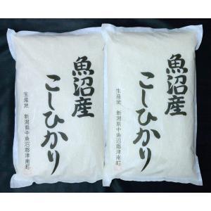 新潟県・魚沼津南コシヒカリ 10kg(5kg×2)|bishokuc