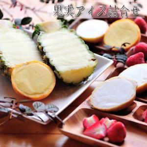 果実アイス詰合せ [送料無料]|bishokuc