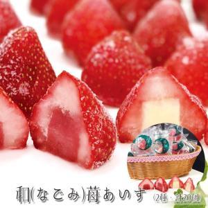 和(なごみ)苺あいす(2種・計20個) [送料無料]|bishokuc
