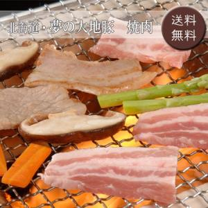 【お中元ギフト2018にも!】北海道・夢の大地豚 焼肉 [送料無料]|bishokuc