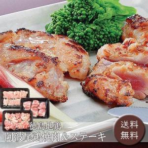 徳島地鶏 阿波尾鶏焼肉&ステーキ [送料無料]|bishokuc