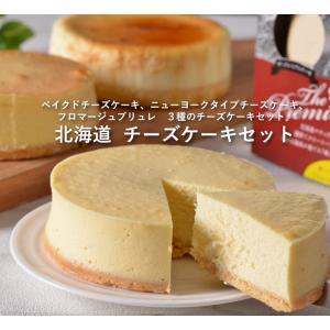 北海道 チーズケーキセット・送料無料 bishokuc