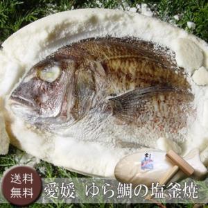 【お歳暮ギフト2017にも!】愛媛  ゆら鯛の塩釜焼 [送料無料]|bishokuc
