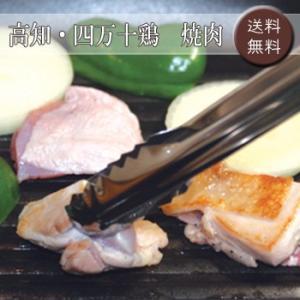 高知・四万十鶏 焼肉 [送料無料]|bishokuc