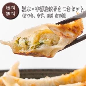 栃木・宇都宮餃子さつきセット [送料無料]|bishokuc
