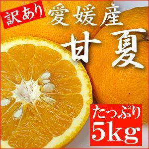 「訳あり」愛媛産・甘夏5kgご自宅用・送料無料|bishokuc