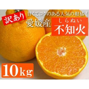 訳あり・愛媛産 不知火(しらぬい)10kg(約40〜50玉)濃厚な甘みの人気の柑橘|bishokuc