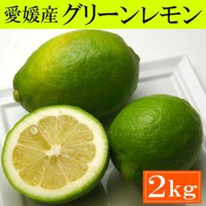 訳あり・愛媛産グリーンレモン2kg「安心・安全がうれしい国産レモン!」送料込|bishokuc