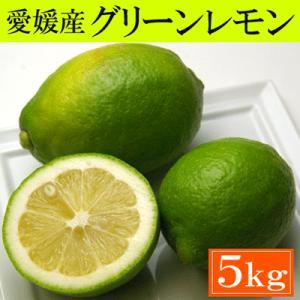 訳あり・愛媛産グリーンレモン5kg「安心・安全がうれしい国産レモン!」送料込|bishokuc